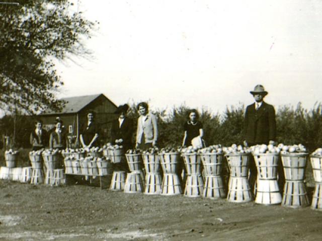 1940 First Lazarus Market