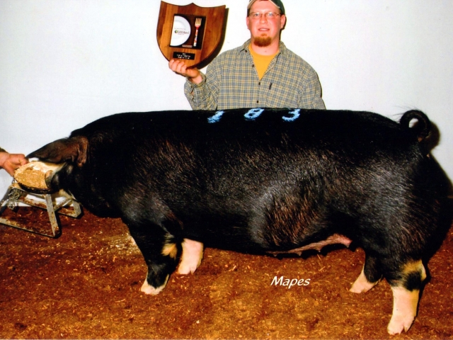 John Strawbridge with 2012 Farm Show Champion Poland Bred Gilt