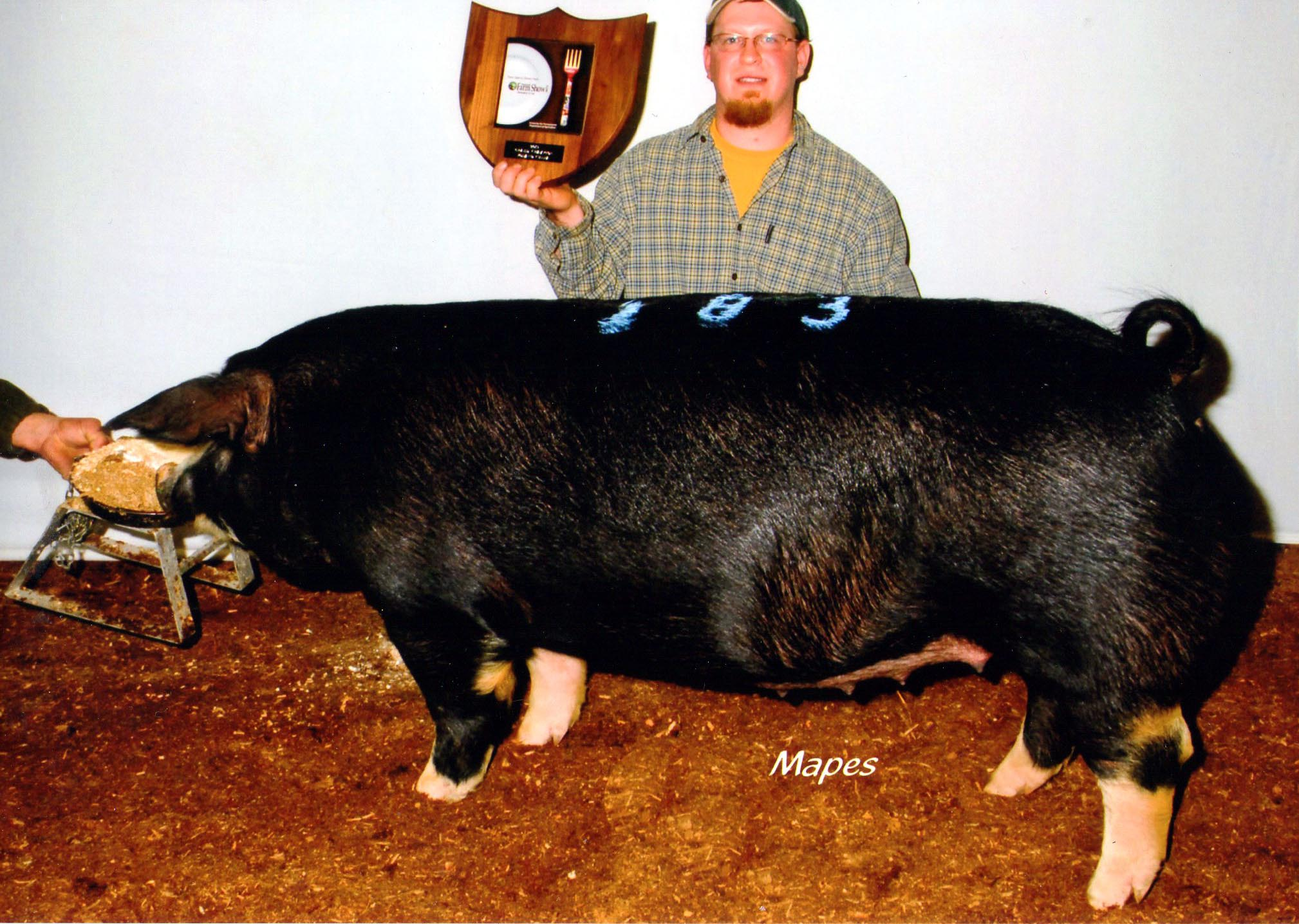 John Strawbridge with 2012 Farm Show Champion Poland Bred Gilt