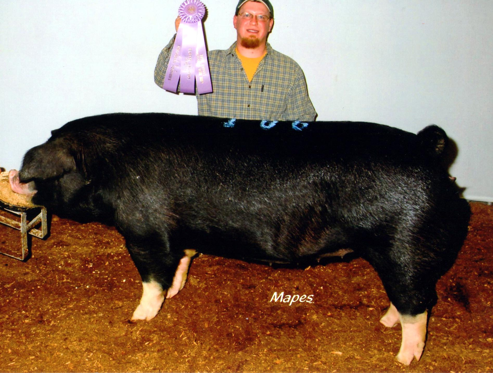 John Strawbridge with 2012 Farm Show Reserve Champ. Poland Bred Gilt