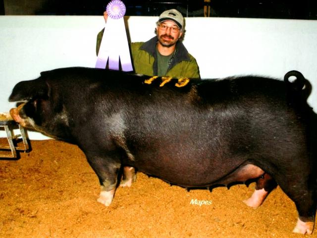 Les Lazarus with Reserve Champion Spot 2013 PA Farm Show