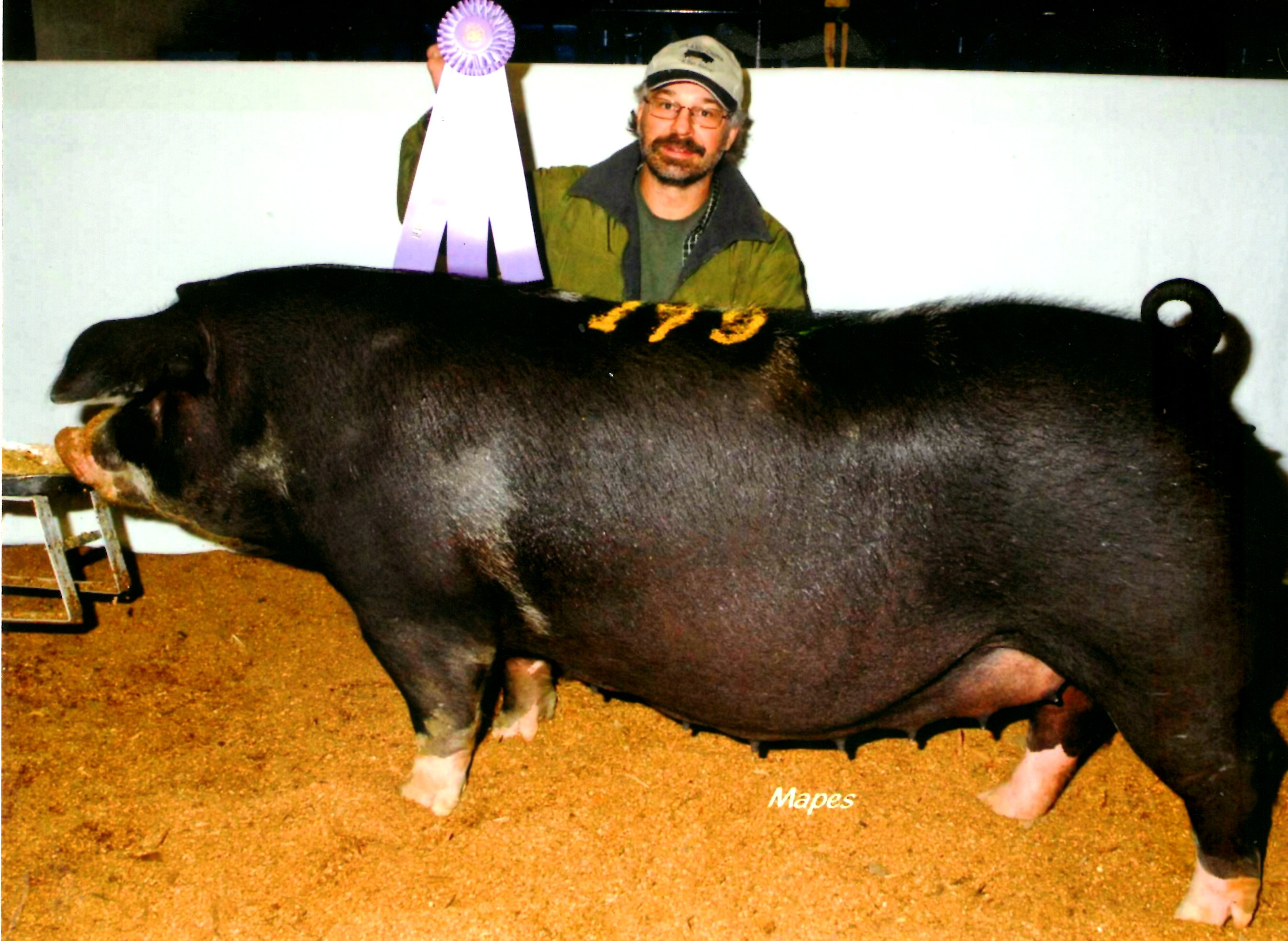 Les Lazarus with Reserve Champion Spot 2013 PA Farm Show