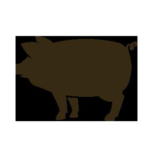 Pig Roast Icon